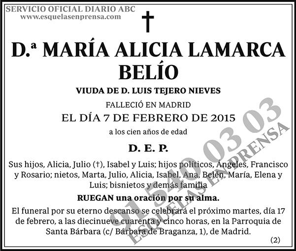 María Alicia Lamarca Belío